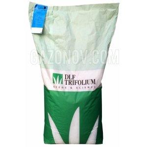 мятлик луговой купить семена россия Green
