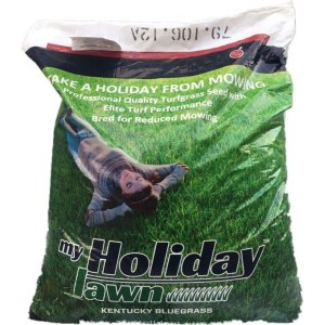Мятлик луговой My Holiday Lawn (22,68 кг)
