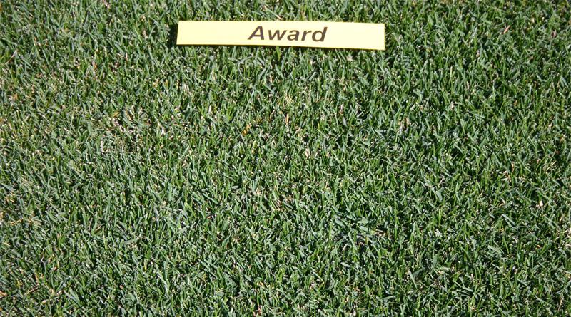 https://gazonov.com/images/upload/Award_2008.jpg