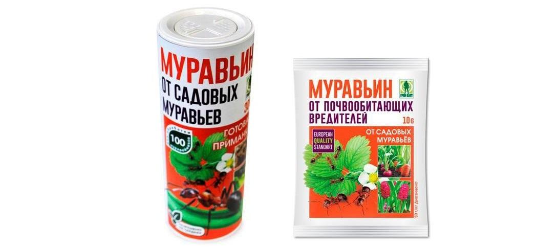 Муравьин Г