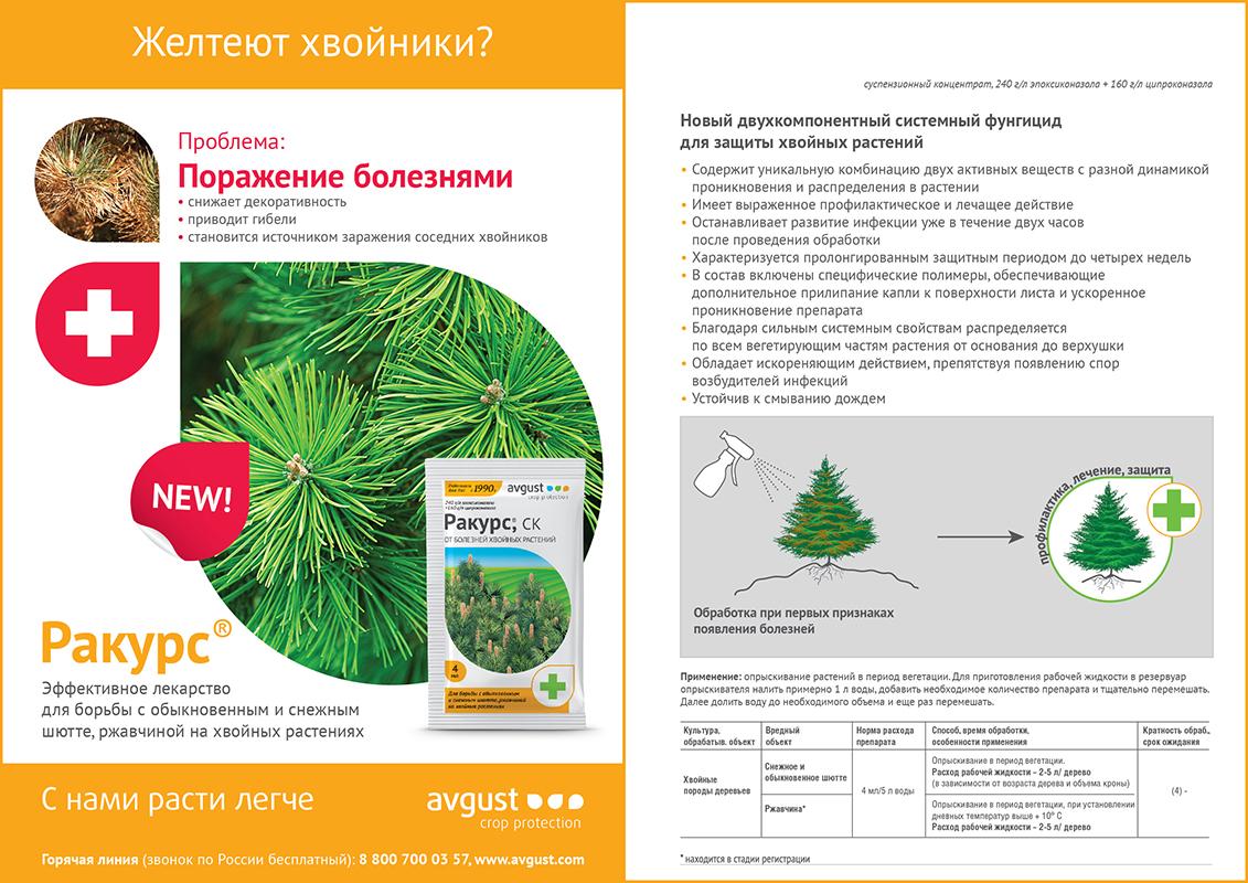 https://gazonov.com/images/upload/rakurs-info.jpg